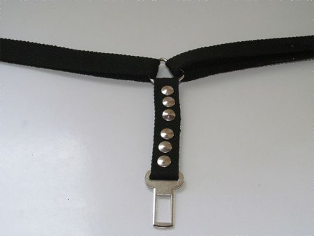 Cinturon de seguridad para dos perros