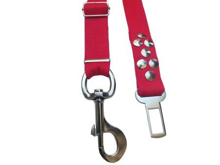 Cinturon reglamentario perro auto