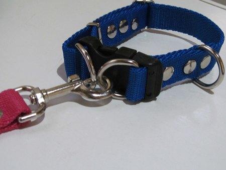 Collar Para Perros Regulable Doble Refuerzo Seguridad