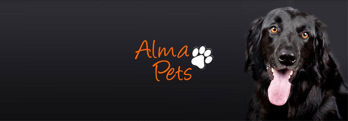 Correas para adiestramiento canino largas y seguras
