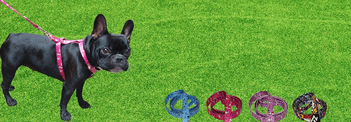 Arnes Collar y correa para perros estampados con diseños de moda
