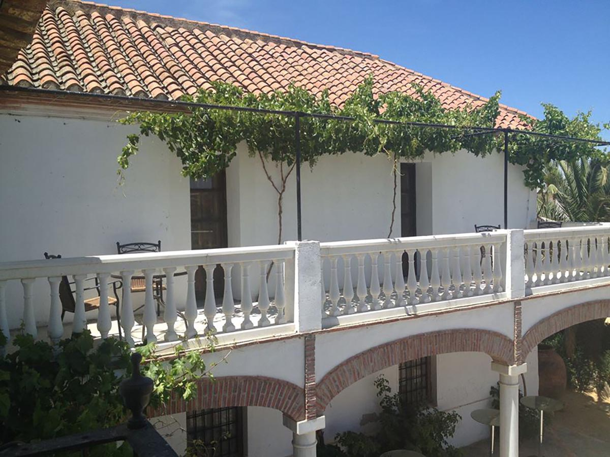 Habitación Olivo 3