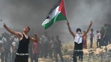Photo of أحمد أبو زهري: الخطة البديلة لإسقاط غزة