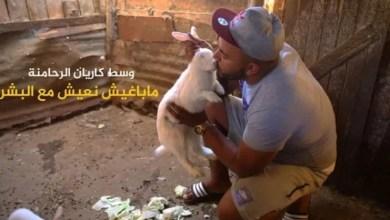 Photo of ربورطاج مصور/ وسط كاريان الرحامنة.. قصة شاب يعيش بين العصافير والحيوانات