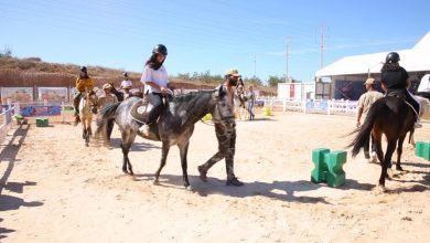 Photo of مختلف الأعمار .. الجميع يركب الحصان في معرض الفرس بالجديدة