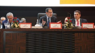 Photo of العثماني: البطالة انخفضت بنسبة 0.3% وهذا بفضل توجه الشباب لإقامة مشاريع خاصة