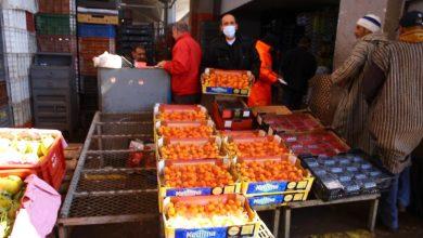 Photo of روبورتاج :تجار الفواكه يدقون ناقوس الخطر من كارثة اقتصادية قادمة بسبب كورونا