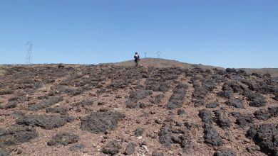 Photo of لأول مرة في تاريخ المغرب إكتشاف كائنات مجهرية عمرها حوالي 570 مليون سنة