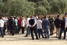 Photo of اقتحامات يومية من المستوطنين للأقصى ونداء من المقدسيين لشد الرحال للمسجد
