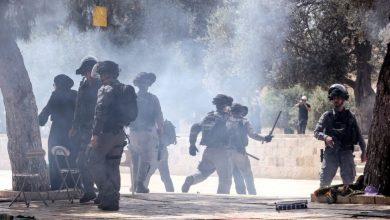 الاحتلال يفتح بوابات الأقصى تمهيدا لاقتحامه من طرف المستوطنين