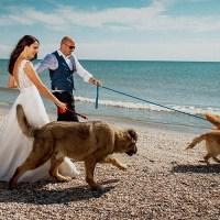 Nuntă Giorgiana & Adrian