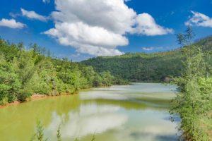 Falcondo recertificada con estándares internacionales de gestión ambiental