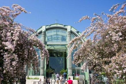 Paris (52)- Jardin du Luxembourg