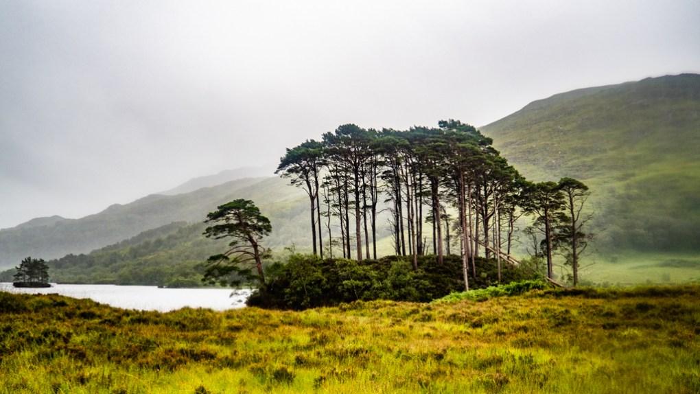 Eilean na Moine island in Loch Eilt, a Harry Potter Filming Location in Scotland
