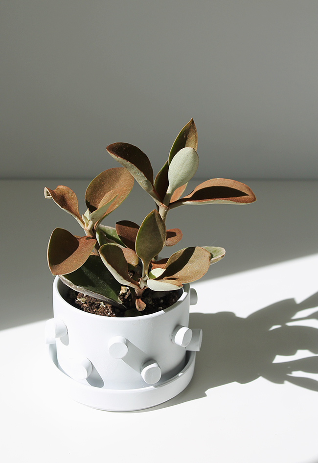 DIY 3D Planter   almost makes perfect