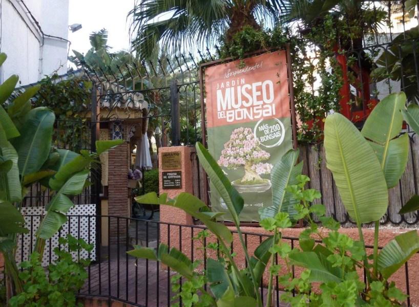 Bonsai Garden Almunecar