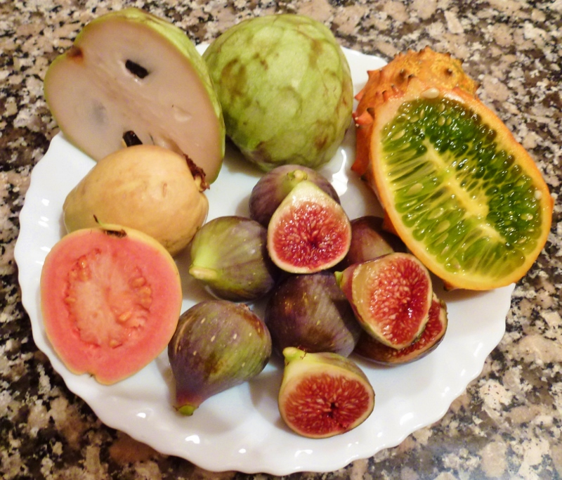 Almuñécar - Spanish Fruit Tasting