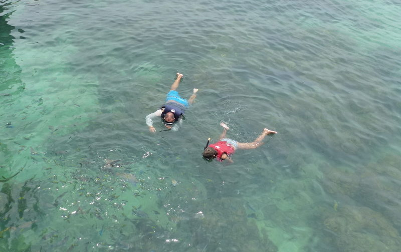 Snorkeling with kids in Almuñécar and La Herradura