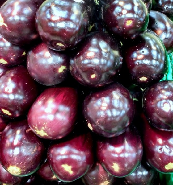 Eggplant - Berenjena
