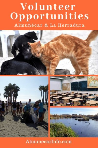 Choose to volunteer with schools, environment, animals and more. Here are some volunteer opportunities in La Herradura, Almuñecar & Costa Tropical. Read more on Almunecarinfo.com