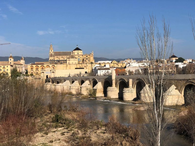 Cordoba day trip - Enjoy one of these bus tours from Almuñécar.  With amazing day excursions to choose from, as well as a guided tour when you arrive or explore on your own.