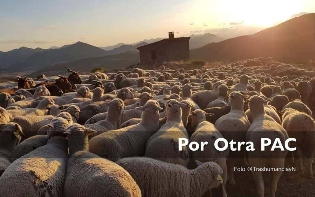 La Política Agraria Común y el Pacto Verde Europeo no están alineados