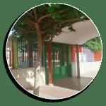 Premi Extraordinari al Rendiment Acadèmic per a tres exalumnes del CEIP Almassaf d'Almussafes