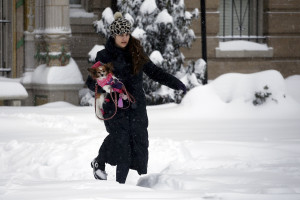 A woman walks with her dog along a street covered by snow during a winter storm in Washington