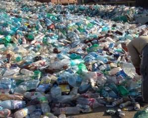 اكتشاف بكتيريا قادرة على التخلص من النفايات البلاستيكية