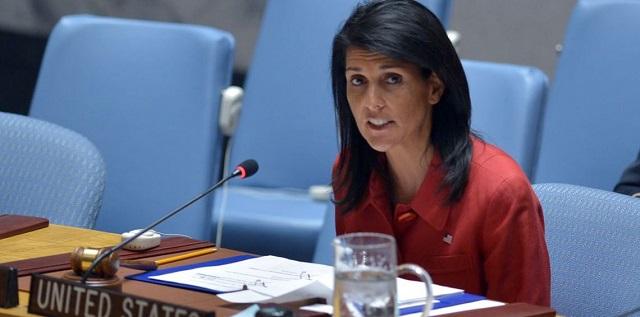 أمريكا تهدد بالتحرك بشأن سوريا إذا تقاعس مجلس الأمن الدولي