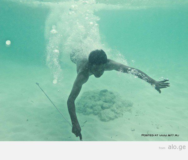 1365282221_maldives-2014-b177.ru-1