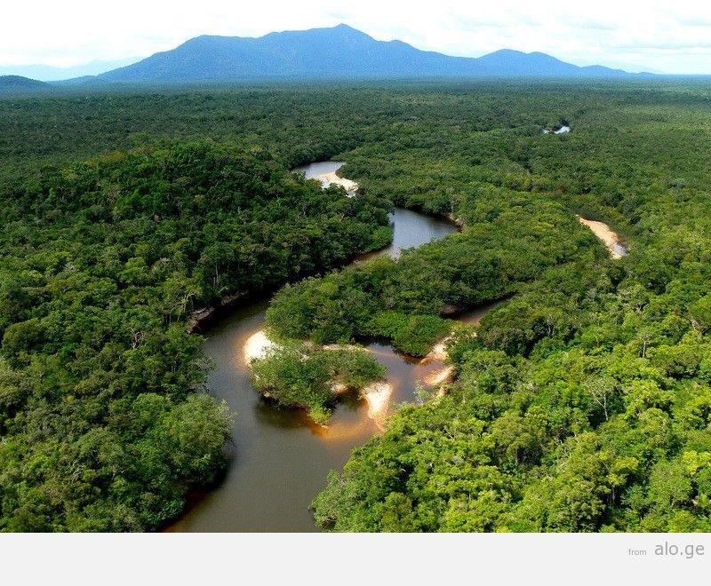 Amazonas02