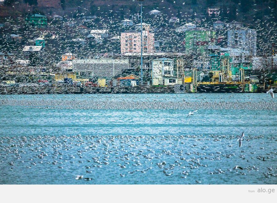 Batumi04