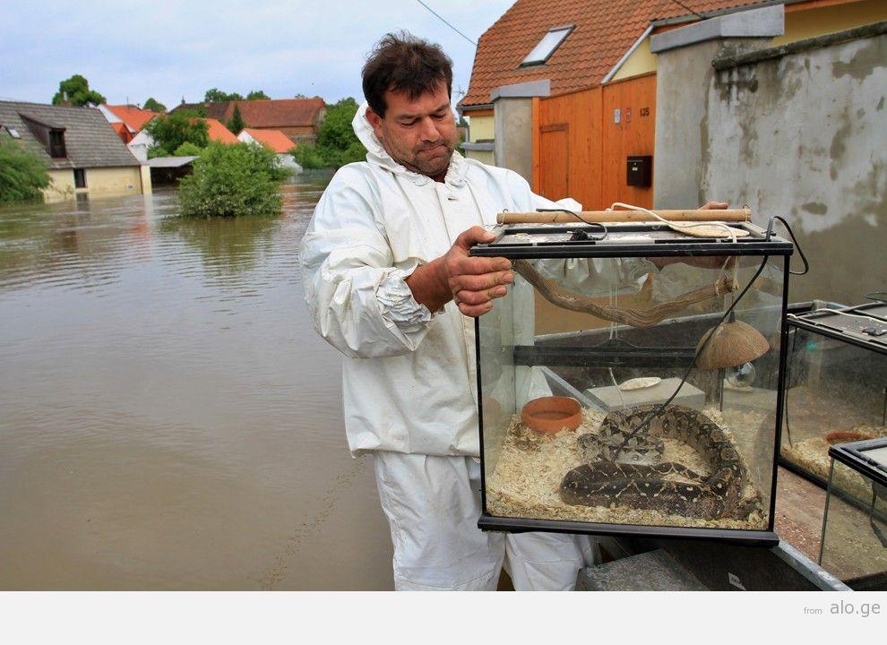 flooding32