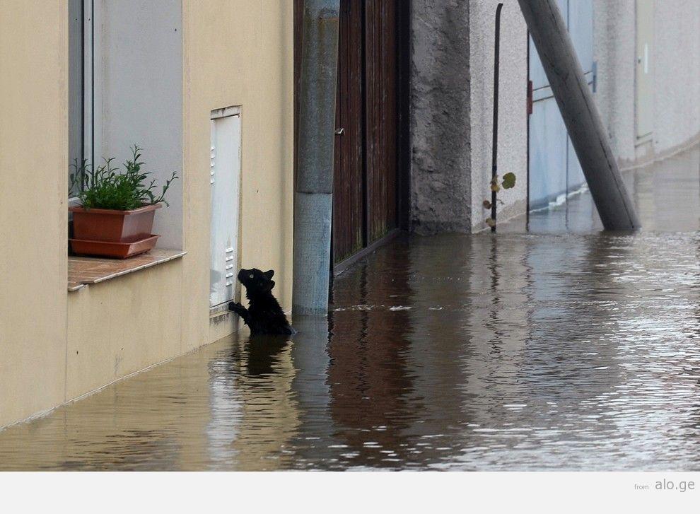 flooding33