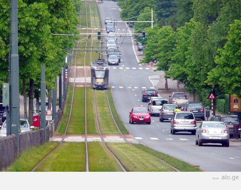 greentramway02