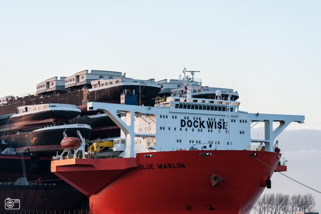 shipshippingships13