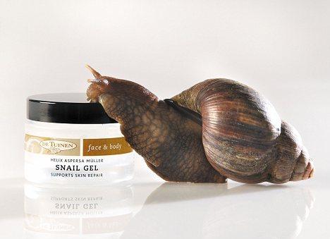 snail-gel