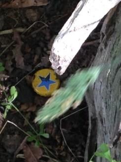 Pesky fallen star cache