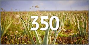 350 osnovnih proizvoda