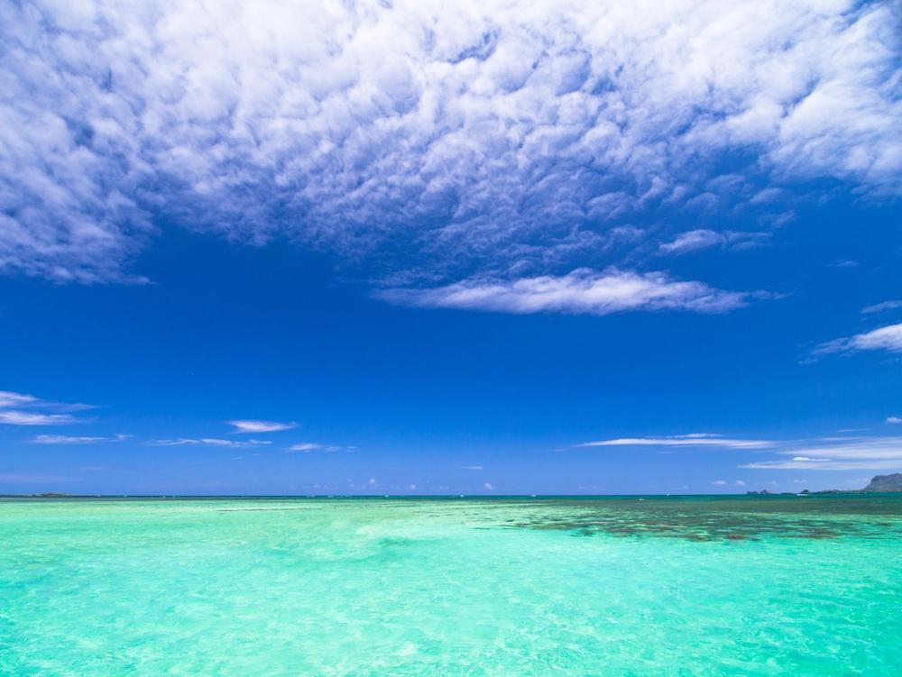 ハワイのサンドバー(オアフ島)