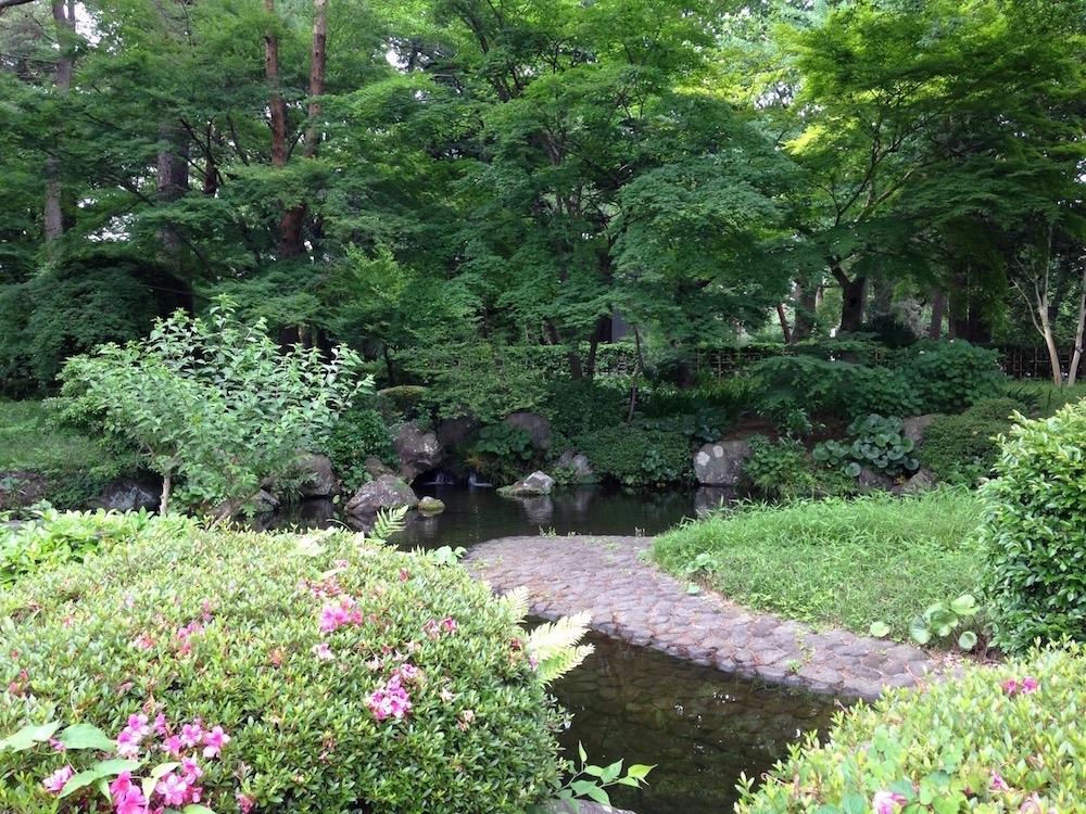 大宮公園(日本庭園2)