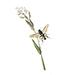 Organiczny biały wosk pszczeli