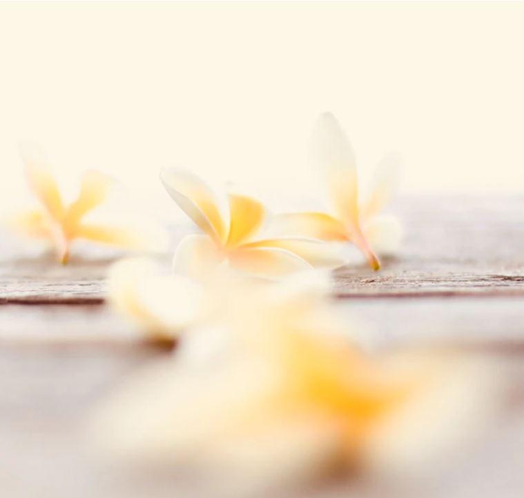 Kwiat Tiare Mali Malediwy Naturalna Świeca Zapachowa