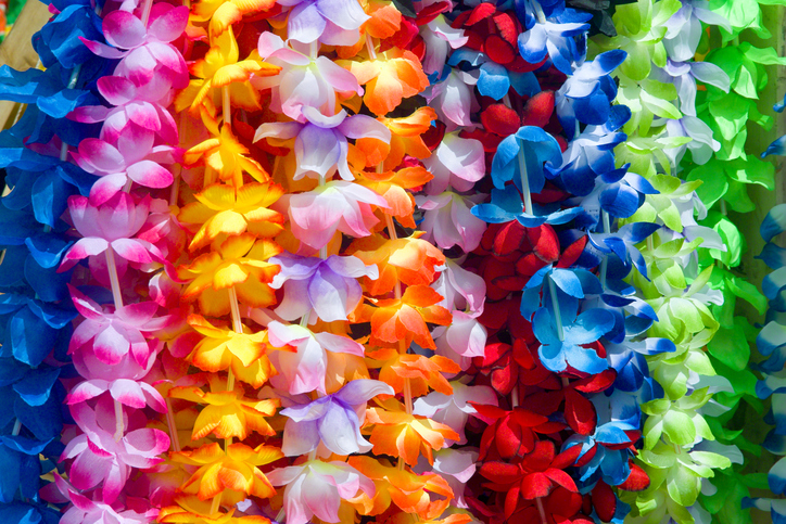 Colorful Hawaiian lei flowers in a row
