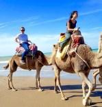 Marruecos: Camel ride