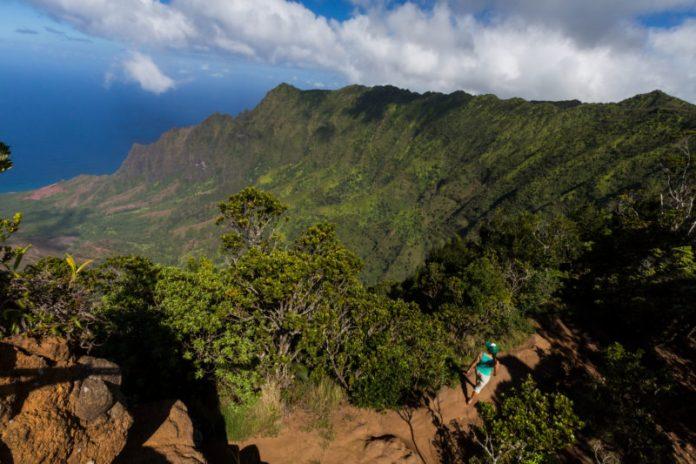 Koke'e State Park. Photo Credit: Hawaii Tourism Authority (HTA) / Tor Johnson