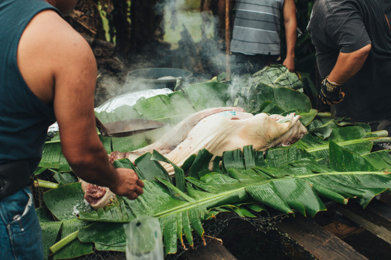 A luau needs a pig cooked in an imu.