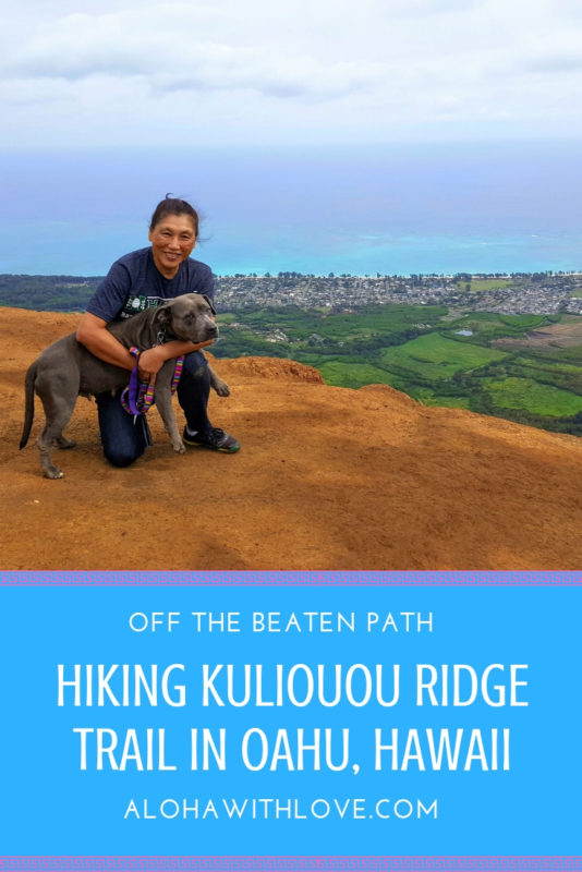 You Won't Believe The 360° View On The Kuliouou Ridge Trail