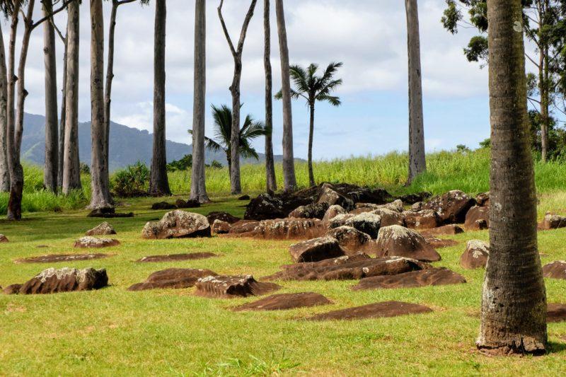The Kukaniloko birthstones where the birth of Hawaiian royalty took place.